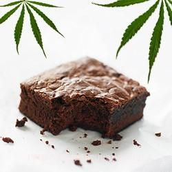 homemade brownies-greenlifehemp