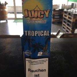 Juicy Blunt Tropical Tropische Früchte-Kokos
